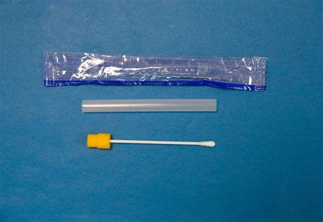 Próbnik do pobrania materiału DNA